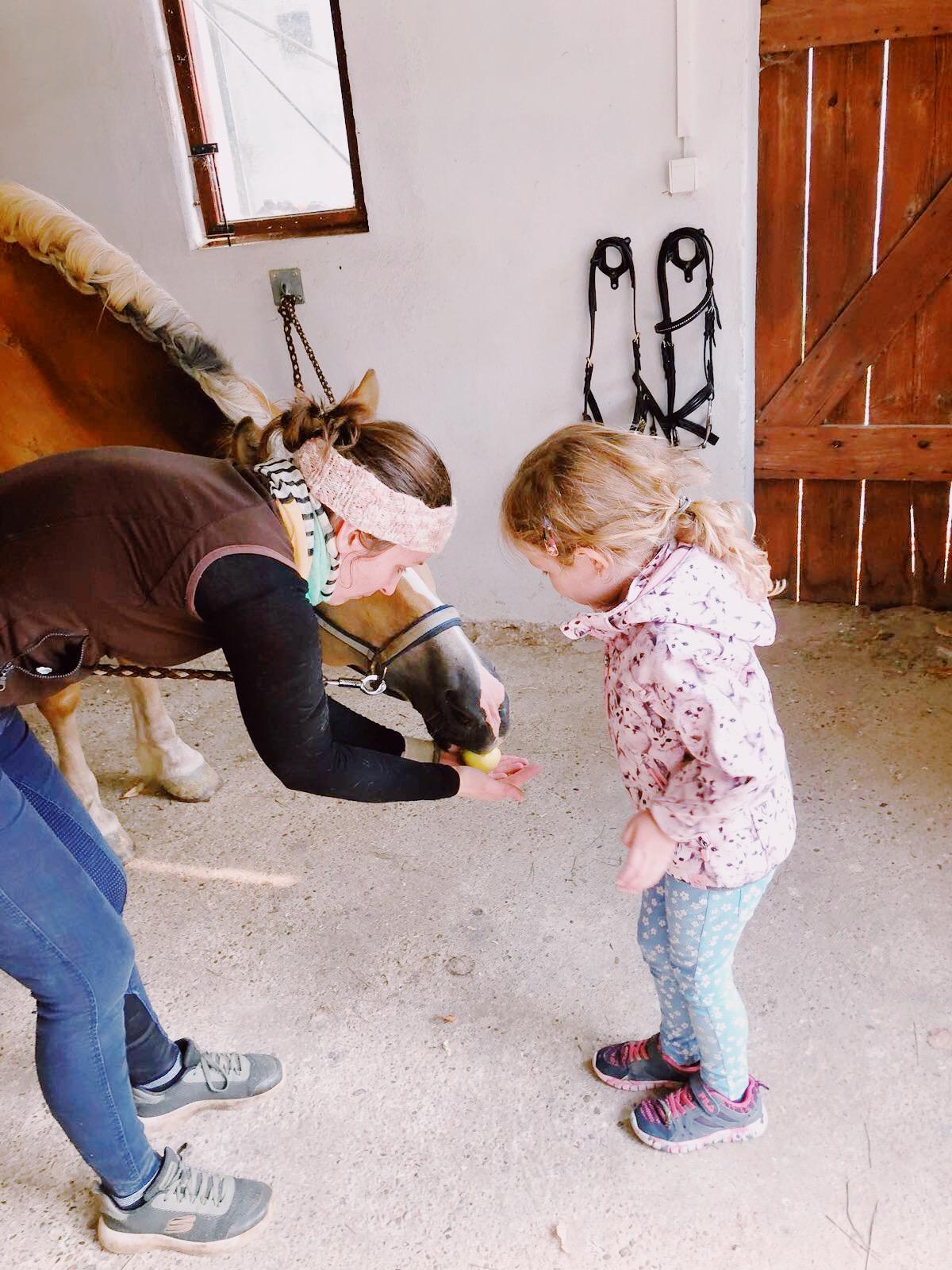 Reiterlebnisse für Kinder, Jugendliche & Erwachsene